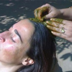 Ayurvedic Hair Spa